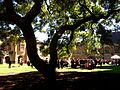 Inside Quadrangle Cloisters, University of Sydney.JPG