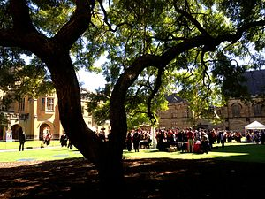 Jacaranda, University of Sydney - View through the jacaranda to a traditional post-graduation ceremony gathering in the Main Quad (2013)