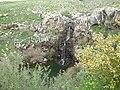 Iris waterfall3288.JPG