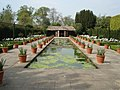 Italian Garden at Hampton Court - geograph.org.uk - 467380.jpg