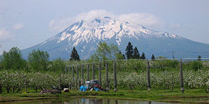 Mount Iwaki - Mount Iwaki and apple orchard