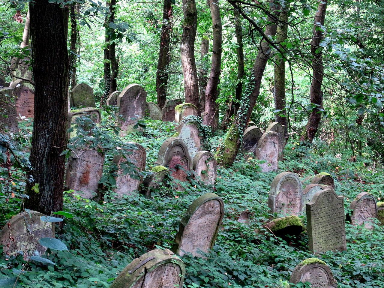 Jüdischer Friedhof Bingen am Rhein 1.JPG