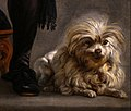 Jacob jordaens, ritratto di govaert van surpele (forse) e la moglie, 1636-38, 02 cagnolino.jpg