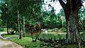 Jardim botanico 04.jpg