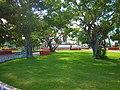 Jardines en el Parque de los Caimanes, Chetumal, México. - panoramio.jpg