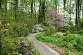 Jenkins Arboretum - DSC00691.JPG