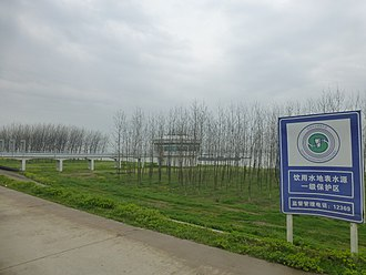Afforestation - Strips of forest are planted along hundreds of kilometers of the Yangtze levees in Hubei province