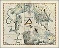 Johannes Hevelius - Triangulum Majus, Triangulum Minus & Musca (also shows Aries, Andromeda, Piscis Boreus and Perseus).jpg