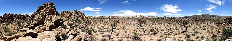 Panoramic 360° view of Joshua Tree Park