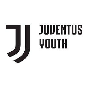 Juventus F.C. Youth Sector - Image: Juventus Youth 2017 logo