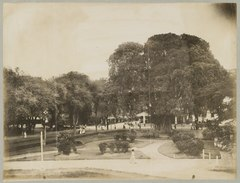 KITLV 12562 - Kassian Céphas - Park in Yogyakarta, with behind the big banyan the society, from the first bastion fortress Vredeburg - Around 1896.tif