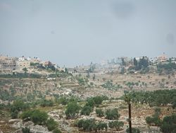 Kafr al-Labad, from the east