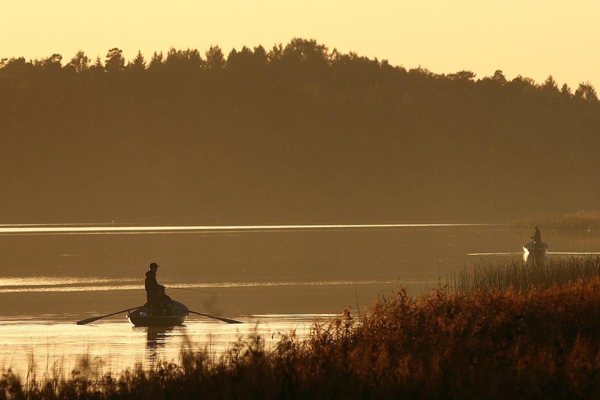 Recreational Fishing Wikipedia