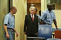 Karadžić trial - further intitial appearance - 29 August 2008.jpg