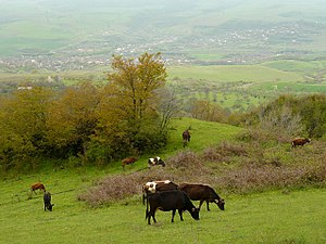 Karabakh - A landscape in Nagorno-Karabakh - a view of the municipality of Qırmızı Bazar
