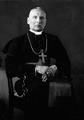 Kazimierz Mikołaj Michalkiewicz.png