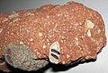 Kimberlite (Olginskaya Pipe, Arkhangelsk Region, Russia) 6.jpg