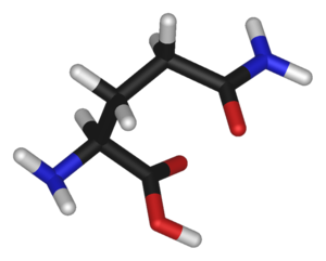 グルタミン's relation image