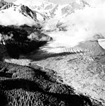 La Perouse Glacier, terminus lobe valley glacier covered in rocks and icefall in the background, August 14, 1961 (GLACIERS 5542).jpg