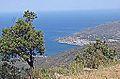 La baie de Llançà et le port de la Selva (Espagne) (14497597088).jpg