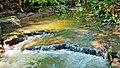 La cascade du ruisseau au levée du jour... - panoramio.jpg