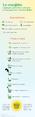 La recette des mojito en infographie.png
