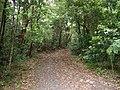 Lady Fuller Park - panoramio (1).jpg
