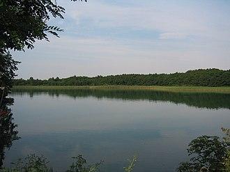 Feldberg Lake District Nature Park - The Breite Luzin in the nature park