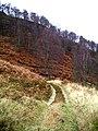Landrover track, Coire a' Chaoruinn - geograph.org.uk - 88042.jpg