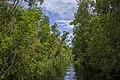 Landscape of theTanjung Puting National Park - Indonesia 3.jpg