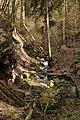Landschaftsschutzgebiet Nagoldtal (8 Teilgebiete), Kennung 2.35.037, Lützengraben, Wildberg 14.jpg