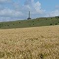 Lansdowne Monument - panoramio (5).jpg
