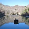Laurel Lake WMA - Laurel Lake-square.jpg