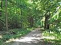 Le Mesnil (Forêt domaniale de Montmorency) - panoramio.jpg