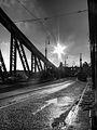 Le pont de la Liberté de Budapest en N&B.jpg