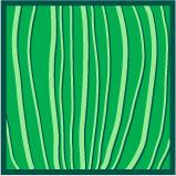 Leaf morphology parallel