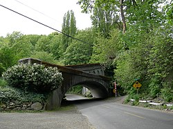 Photograph of Lake Washington Boulevard passing under a concrete arch bridge in a vegetated setting