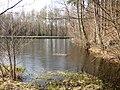 Lesenská přehrada.jpg