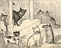 Letters from a cat - published by her mistress for the benefit of all cats and the amusement of little children (1880) (14773034223).jpg