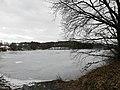 Lhota Veselka, pohled na Dolejší rybník 04.jpg