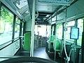 Lignebus627.jpg