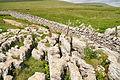 Limestone pavement east of Ingleborough (7631).jpg