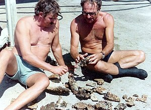 Robert F. Marx - In the left Bob Marx with the Israeli marine archaeologist Elisha Linder