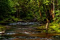 Little Union River Gorge PLC-WF-12.jpg