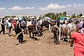 Livestock market At-Bashi.jpg