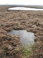 Loch an Laoigh - geograph.org.uk - 1253273.jpg