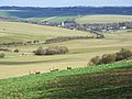 Lodge Down and view of Lambourn - geograph.org.uk - 725234.jpg