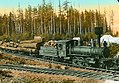 Logs being transported by the Comox & Campbell Lake Tramway Co., Vancouver Island, BC, about 1925.jpg