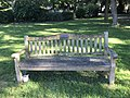Long shot of the bench (OpenBenches 1813-1).jpg