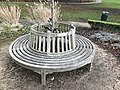 Long shot of the bench (OpenBenches 3254-1).jpg